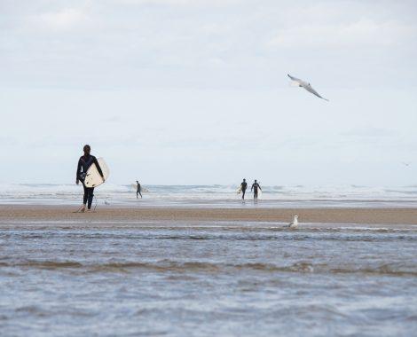 surfer-3385807_1920-1